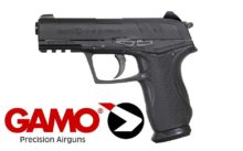 Gamo-C15-Blowback-1
